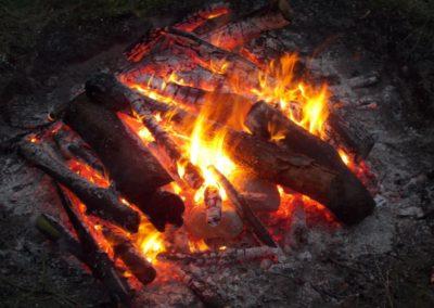 Dzikie Studia Ogień